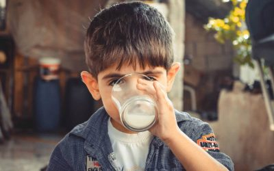 Is Cow's Milk Toxic for My Child?