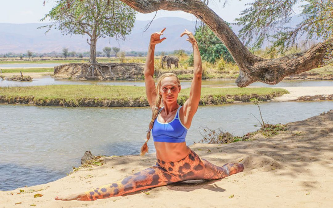 Ahimsa Embodied: Perspective from a Plant-Based Yogi