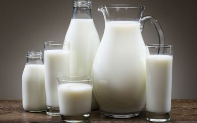 Scientific Review Finds Biological Link Between Dairy Consumption and Obesity