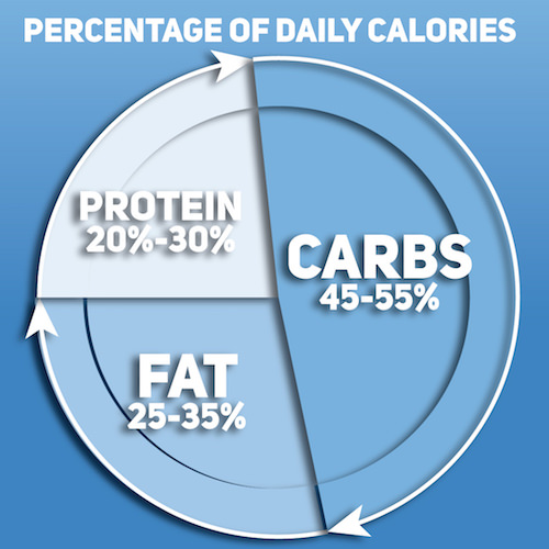 Nutrition Pie Chart