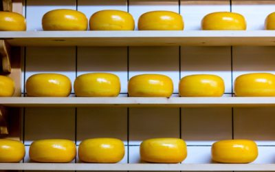 The 411 on Cheese: Definition, Health Risks, and Alternatives